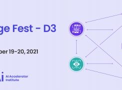 Edge Fest – D3