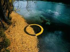 The circular economy: How do we get there?