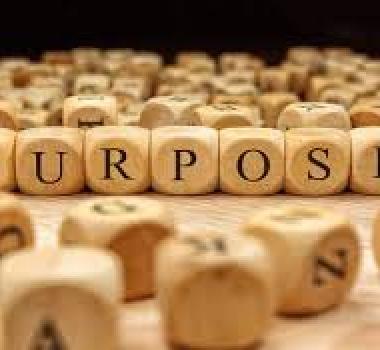 The Purpose of Purpose?